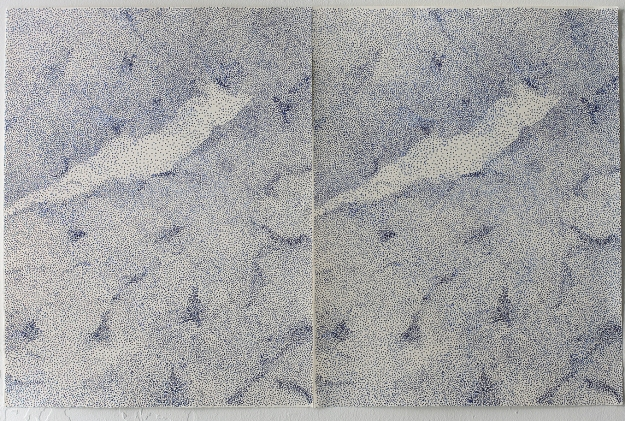 Lithography 50 x 65 + 50 x 65 cm 2013