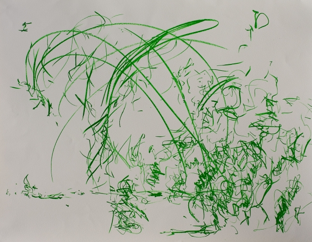 Lithography 50 x 65 cm 2013