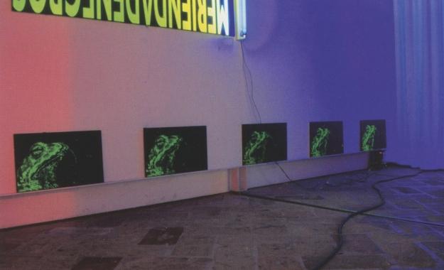 Sapos Serigrafía sobre PVC 30 x 50 cm 2003 Encuentros de Gráfica, Ciudadela 2003