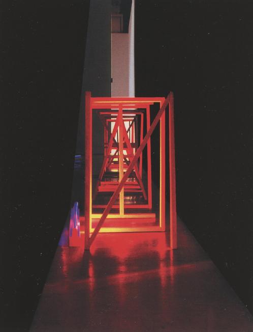 Autocanibalización Vista Posterior Galería Moisés Pérez de Albeniz, 2003