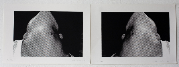 Serigraph 30 x 40 cm + 30 x 40 cm 2008
