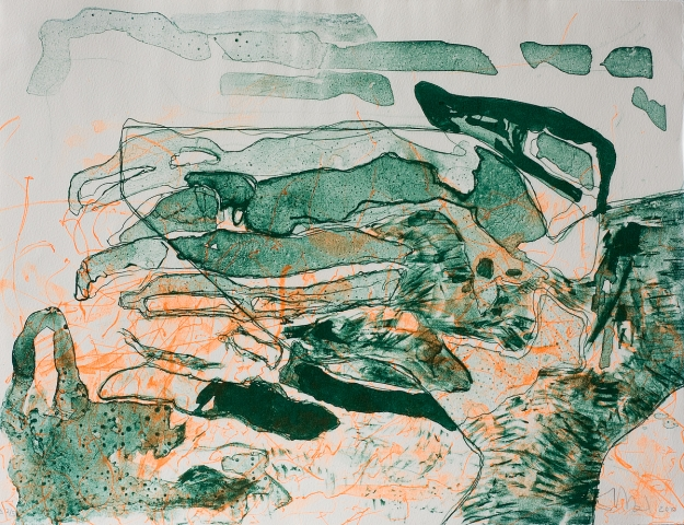 Lithography 30 x 40 cm 2010