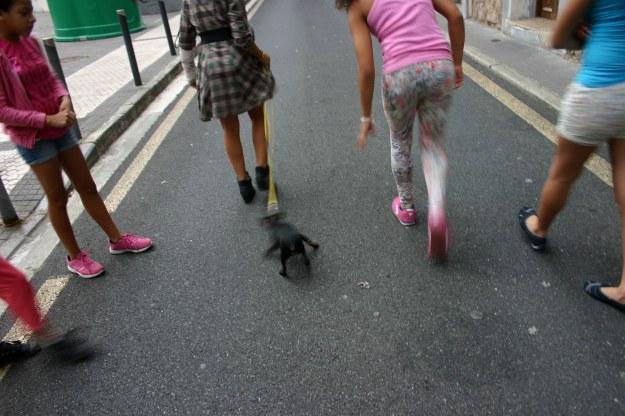 18011 chicas-con-perrito-pasajes-oct-2014