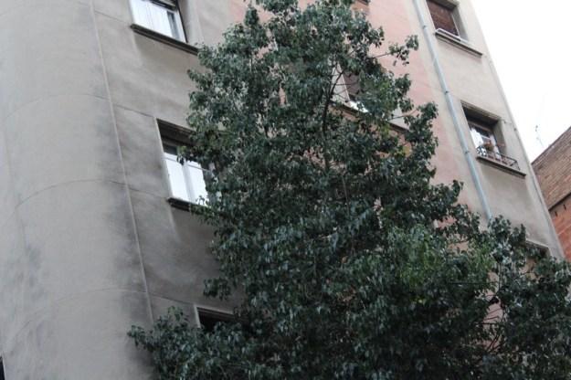 barcelona 1 (8)
