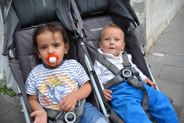 bebés gitanos 2016 - baja